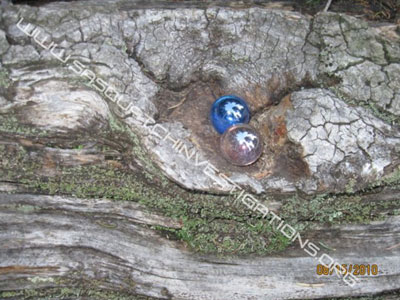 Bigfoot Picture Of Balls