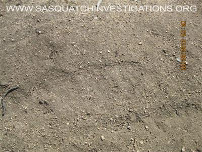 Sasquatch Research Trip Central Colorado 032512 Picture 18
