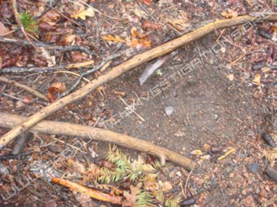 Bigfoot Footprint Rampart