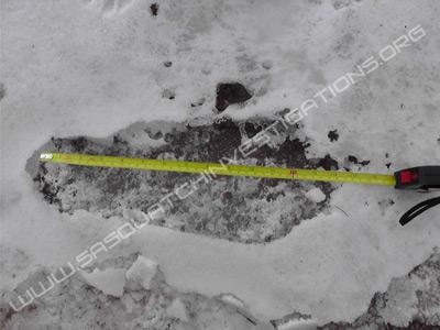 Bigfoot Footprint Ice