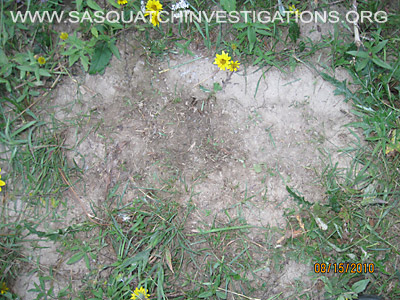 Bigfoot Research In Northwest Colorado 2011 - Footprints