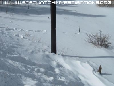 Sasquatch Picture Wreck