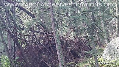 Bigfoot Next Evidence Southern Colorado 2