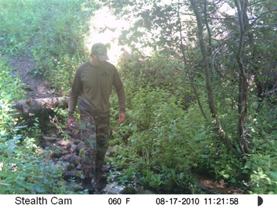 Sasquatch Picture Camera East Going