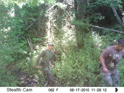 Sasquatch Picture Camera West Back
