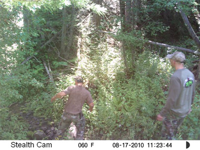 Sasquatch Picture Camera West Going