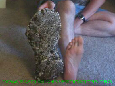 Bigfoot Print Casting