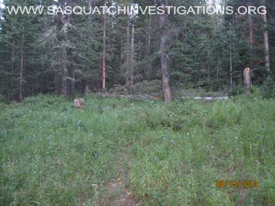 Sasquatch Meat Pit Area