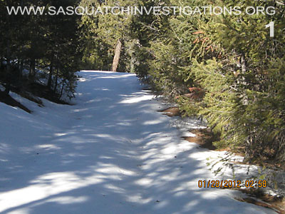 Bigfoot Research Rampart Range Picture 1