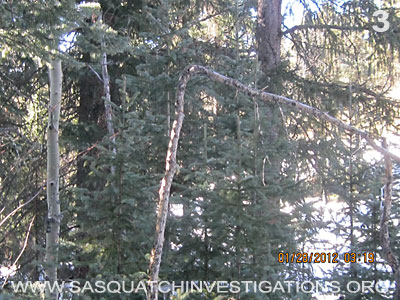 Bigfoot Research Rampart Range Picture 3