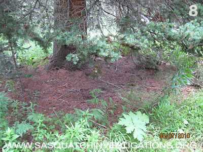 Bigfoot Research Rampart Range Picture 8