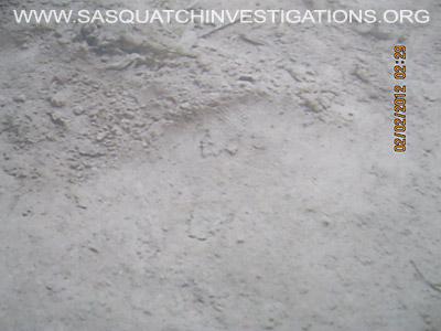 Sasquatch Footprint Ridges Picture