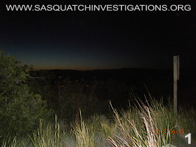Sasquatch Is Hiding In Plain Sight Report 12-23-13 1