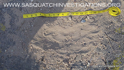 Colorado Bigfoot Print 061012