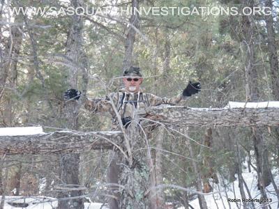 Colorado Bigfoot Tree Break 03