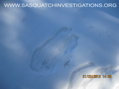 Central Colorado Bigfoot Footprints 012013 3