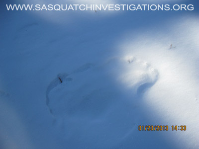Central Colorado Bigfoot Footprints 012013 4