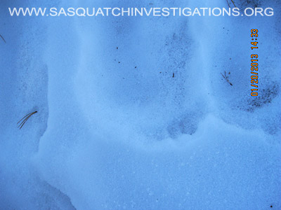 Central Colorado Bigfoot Footprints 012013 5