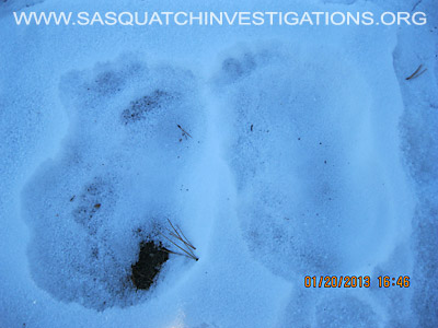 Central Colorado Bigfoot Footprints 012013 6