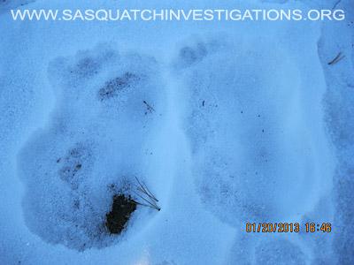 Central Colorado Bigfoot Footprints 012013 6