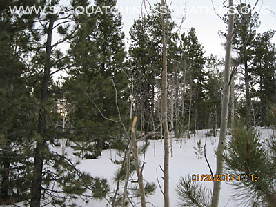 Central Colorado Bigfoot Footprints 012013 7