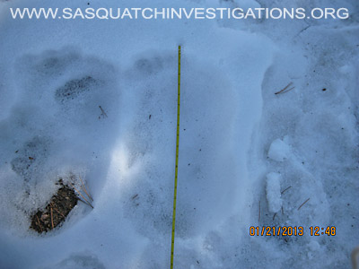 Central Colorado Bigfoot Footprints 012013 9