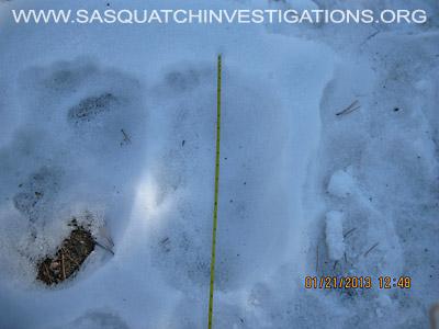 Central Colorado Bigfoot Footprints 012013 9