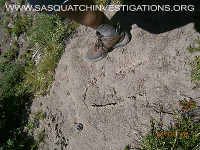 Big Foot Prints In Colorao 07-10-13 2