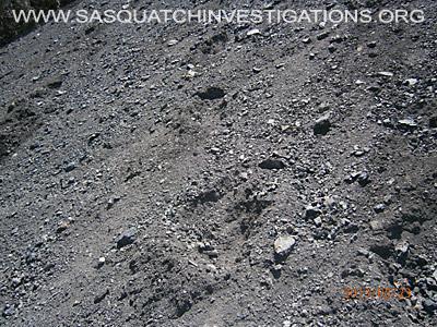 Big Foot Tracks In Colorado 1