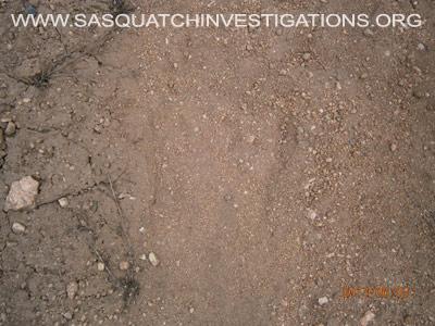 Big Footprint in Colorado 060313 2