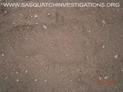 Big Footprint in Colorado 060313 3