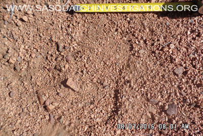 Bigfoot footprint in Colorado 3
