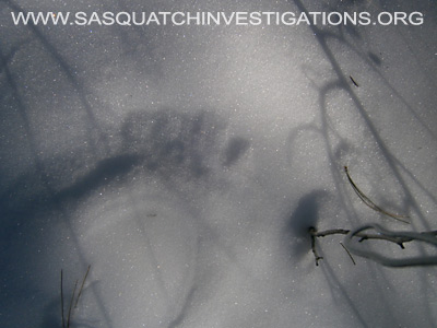 Bigfoot Foot Prints in Colorado 12-19-13 4