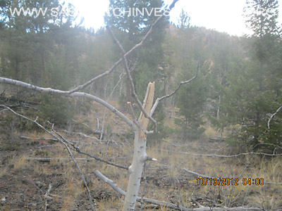 Bigfoot Colorado Research 10-13-12 Field Report 12