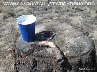 Sasquatch Research In Colorado Field Report 03-25-13 6