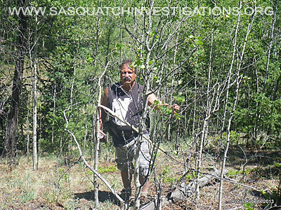 Colorado Squatch Field Report 06-21-13 5