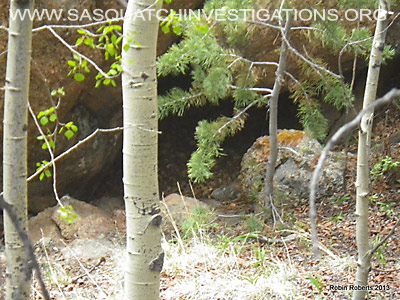 Colorado Bigfoot Research June 2103 8