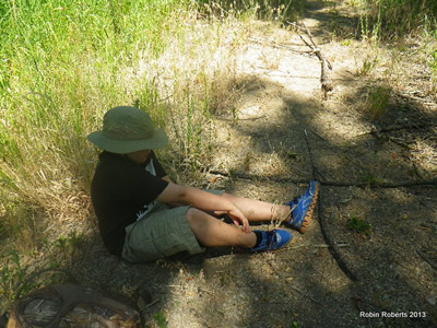 Squatching in Colorado 06-23-13 9