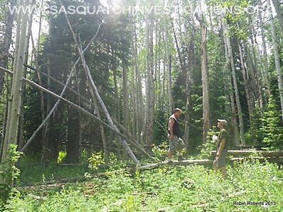 Colorado Bigfoot Research Field Report Picture 5