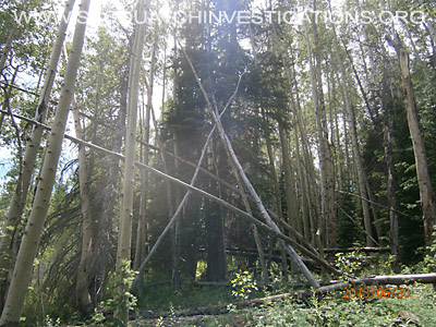 Bigfoot Tree Structures In Colorado 1