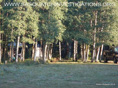 Central Colorado Bigfoot Research Field Report 1