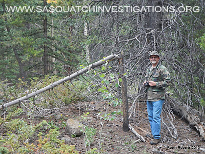 Central Colorado Bigfoot Research Field Report 5