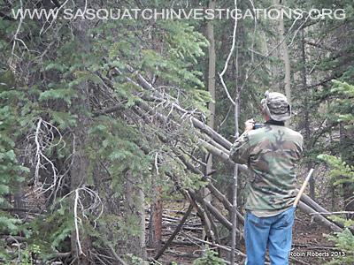 Central Colorado Bigfoot Research Field Report 7