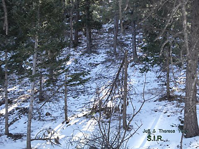 Colorado Bigfoot Research Field Report 12-31-13 3