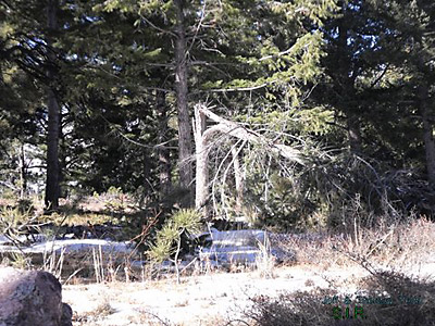 Colorado Bigfoot Research Field Report 12-31-13 1