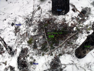Sasquatch Investigations of the Rockies 05-04-14 Field Report 1