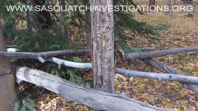 Colorado Bigfoot Research Field Report 11-24-14 2